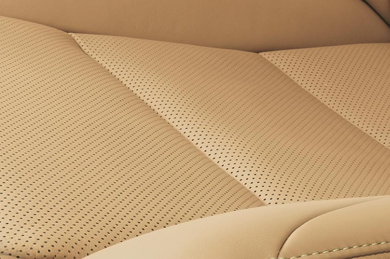 Leather Interior Protection